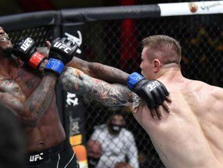 Vettori VS Holland UFC fight night