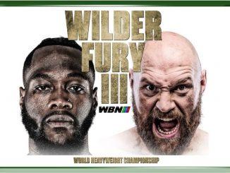 analyse du combat wilder vs fury
